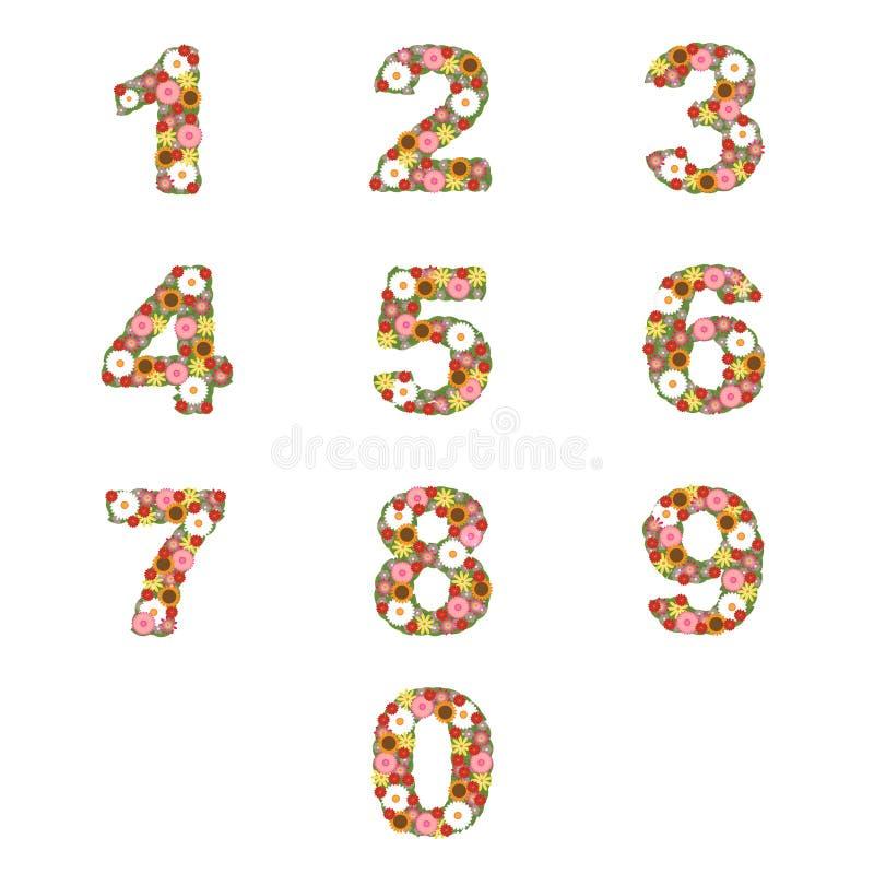 Bloemen aantallen stock illustratie