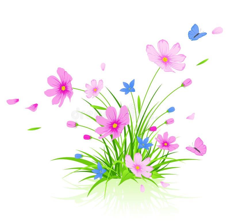 bloemen achtergrond met rode kosmosbloemen vector illustratie