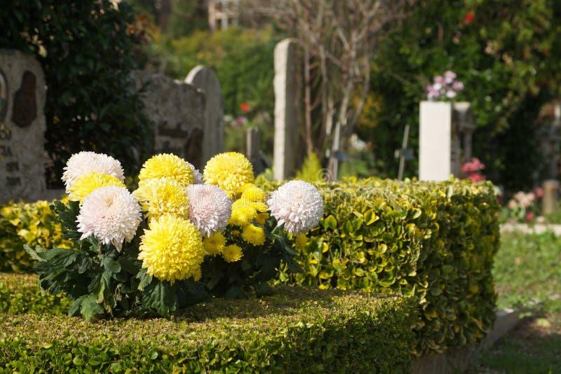 Bloemen in begraafplaats stock foto's