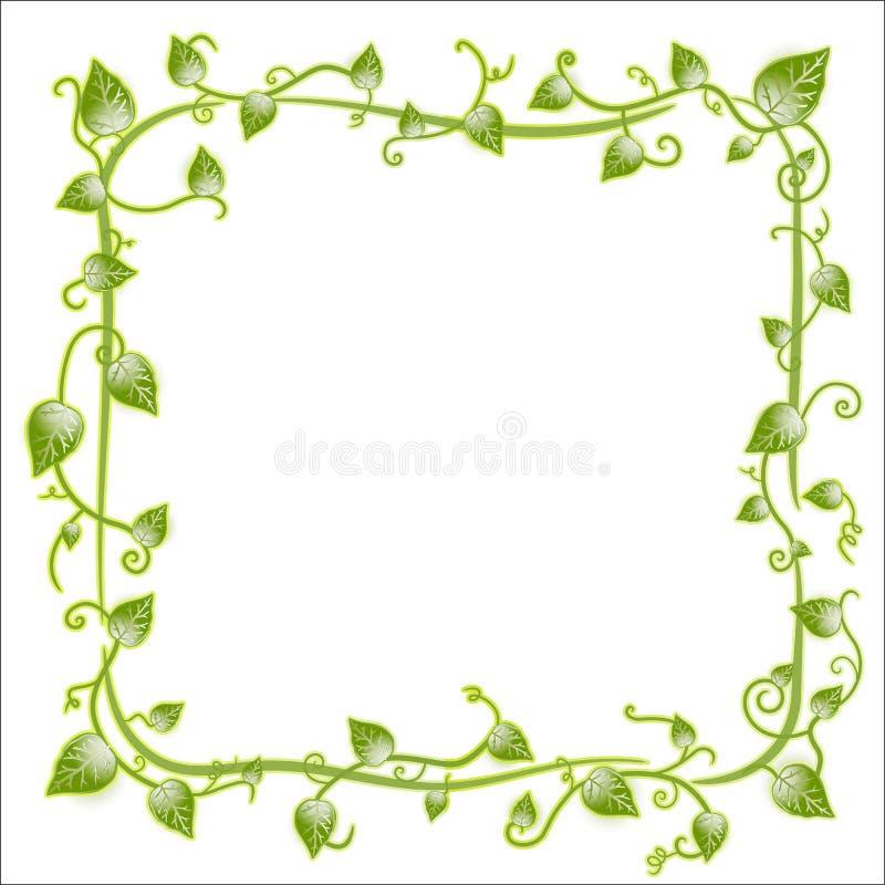 Bloemen blad klassiek frame royalty-vrije illustratie