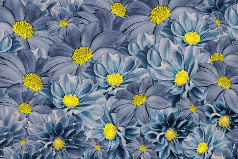 Bloemen blauw-turkooise achtergrond van dahlia's Helder Bloemstuk Een boeket van blauwe dahlia's royalty-vrije stock foto