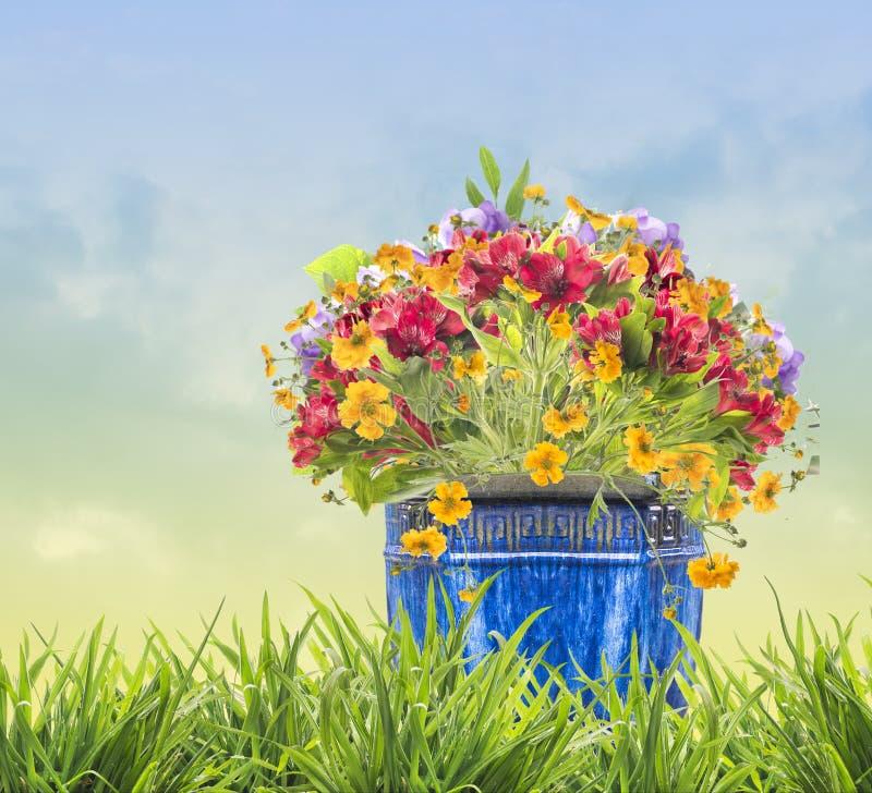 Bloemen in blauwe pot in gras op hemelachtergrond royalty-vrije stock afbeeldingen