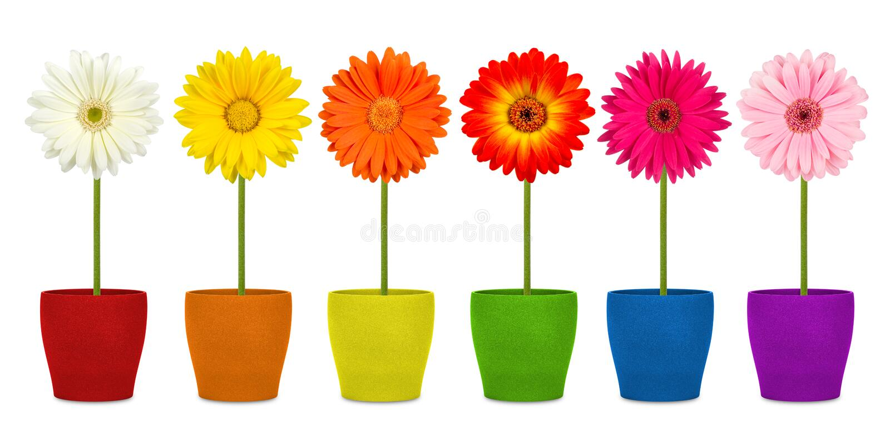 Bloemen in coloful potten royalty-vrije stock fotografie