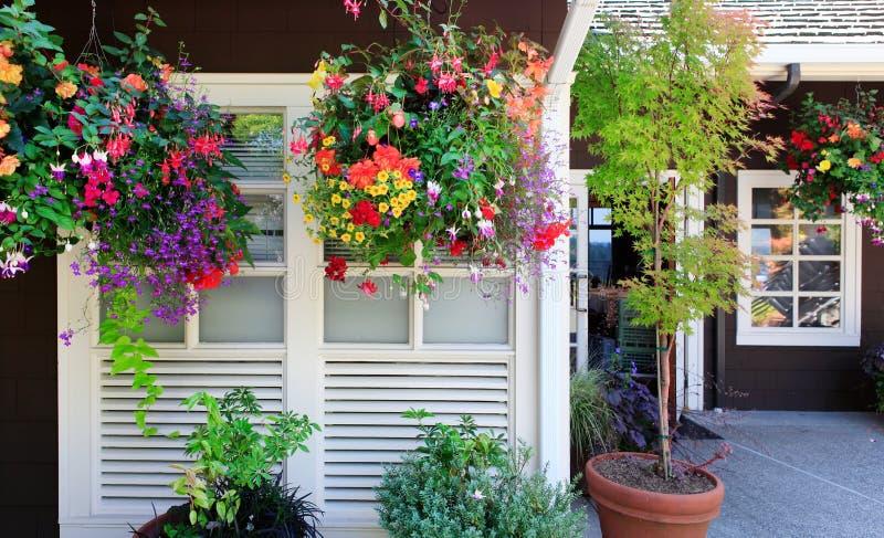 Bloemen in de hangende manden met venster. royalty-vrije stock foto