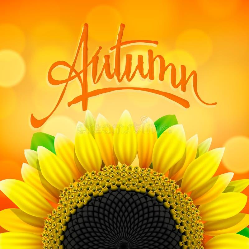 Bloemen de herfstachtergrond met zonnebloem vector illustratie