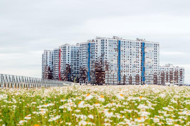 Bloemen de met meerdere verdiepingen van de huizenkamille Rusland, heilige-Petersburg Juli 2017 stock afbeelding