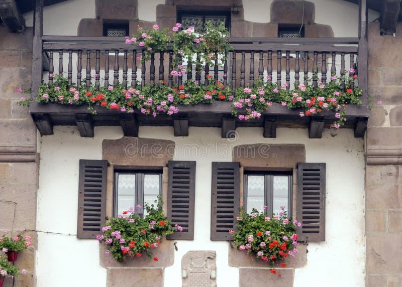 Bloemen in de vensters stock afbeelding