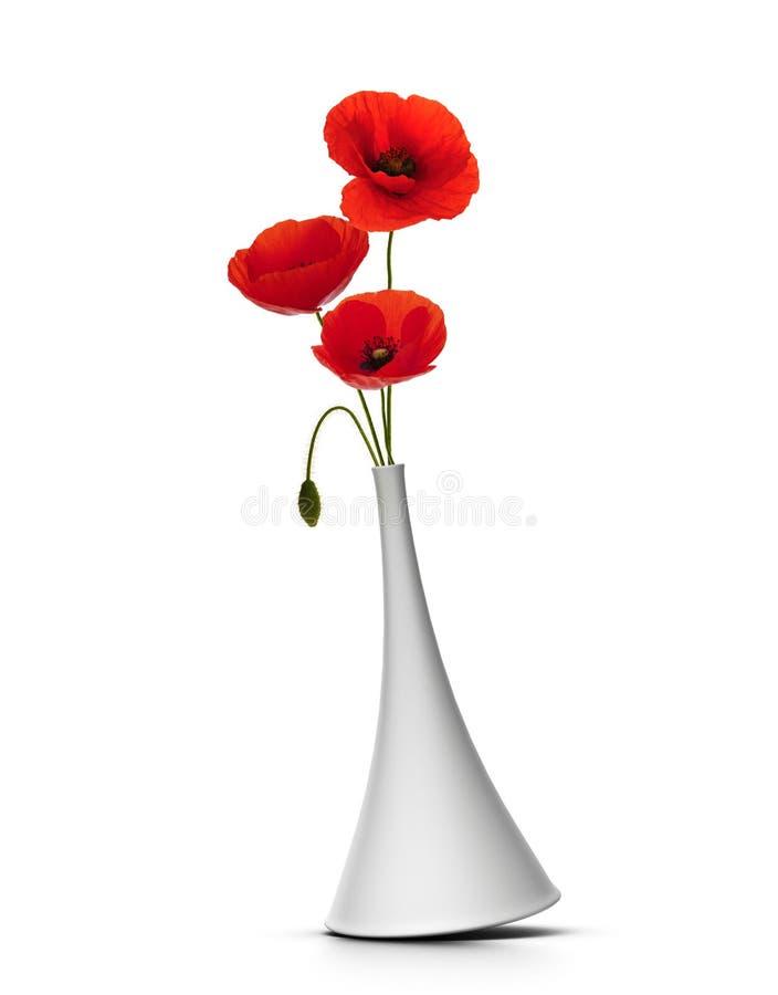 Bloemen in de zomer, rode papavers royalty-vrije stock afbeeldingen