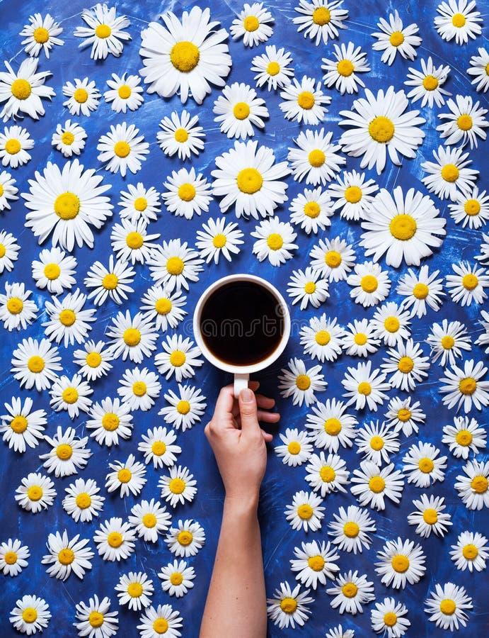 Bloemen de zomerachtergrond Een mok koffie in een vrouwen` s hand op een blauwe achtergrond met kamille of madeliefjes Hello-de z stock afbeelding