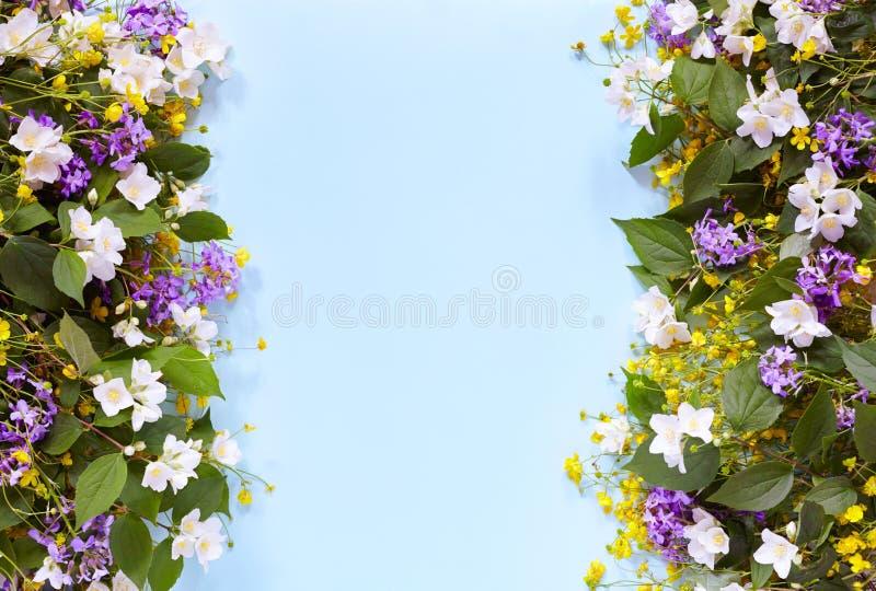 Bloemen de zomerachtergrond op een blauwe lijst met wildflowers en jasmijn Mening van hierboven De stemming van de zomer royalty-vrije stock foto's