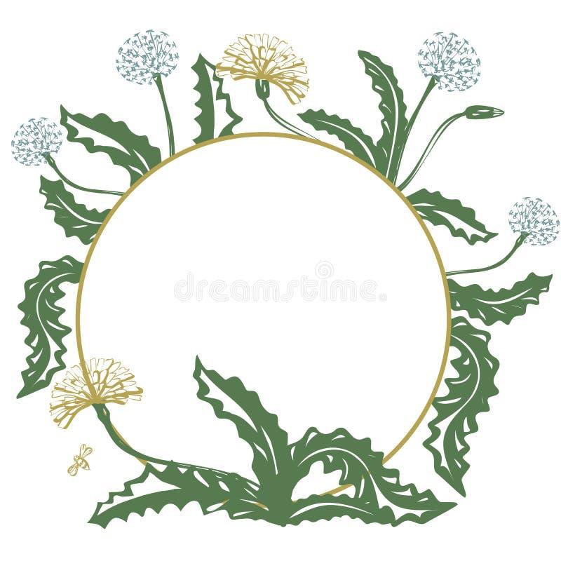 Bloemen decoratieve kaart met paardebloem en plaats voor uw tekst, vectorbeeld royalty-vrije illustratie