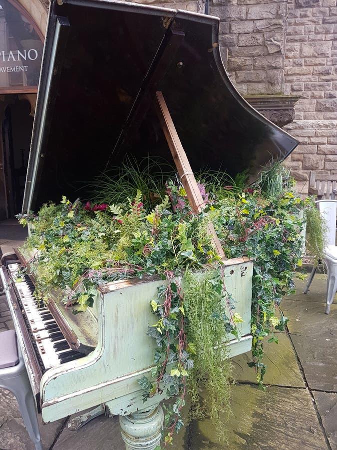 Bloemen die uit een baby grote piano voortkomen royalty-vrije stock foto