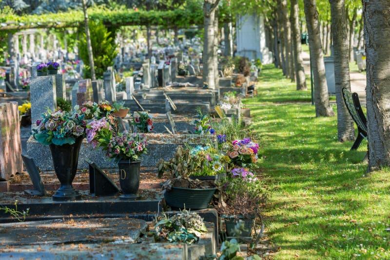 Bloemen in een begraafplaats met grafstenen op achtergrond stock fotografie