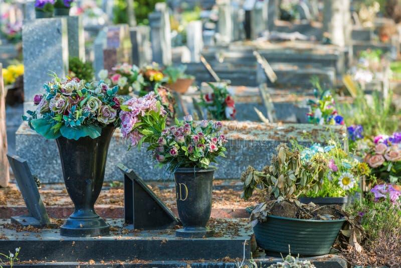 Bloemen in een begraafplaats met grafstenen op achtergrond royalty-vrije stock foto