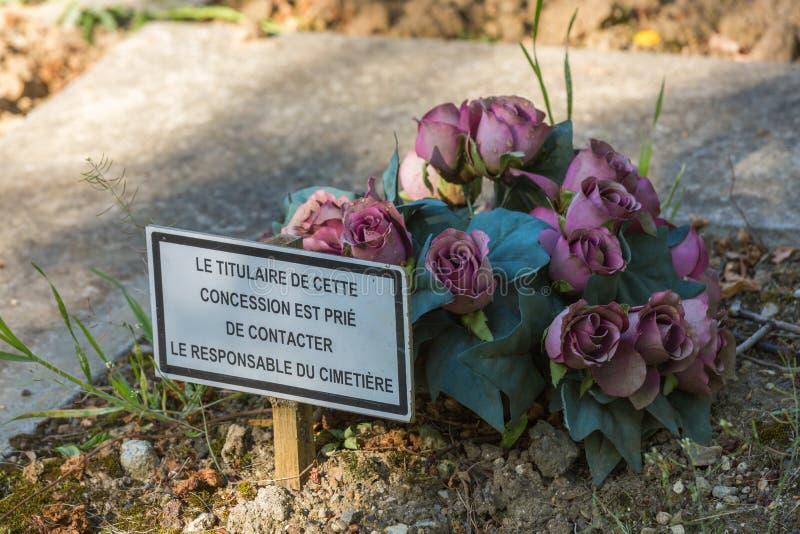 Bloemen in een begraafplaats met verlaten graf royalty-vrije stock afbeelding
