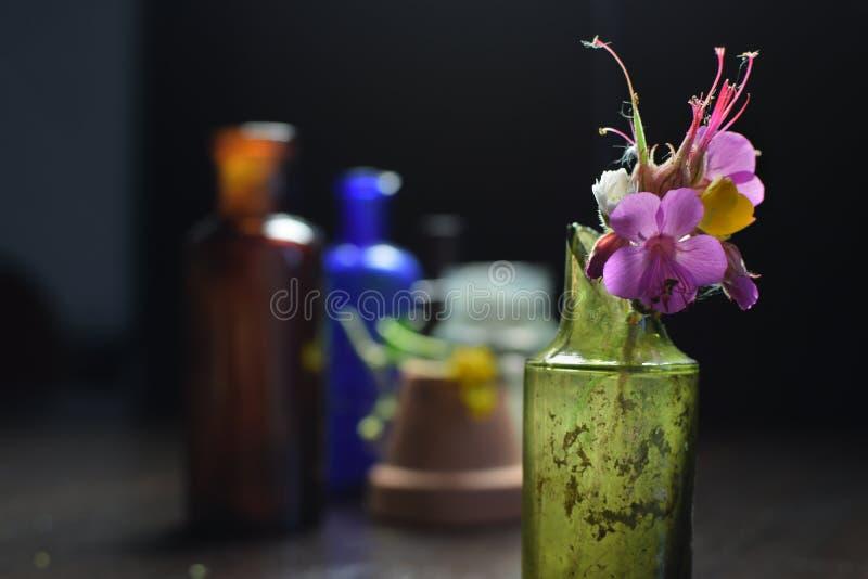 Bloemen in een gebroken fles stock afbeeldingen