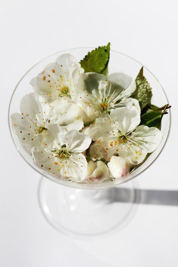 Bloemen in een glas royalty-vrije stock fotografie