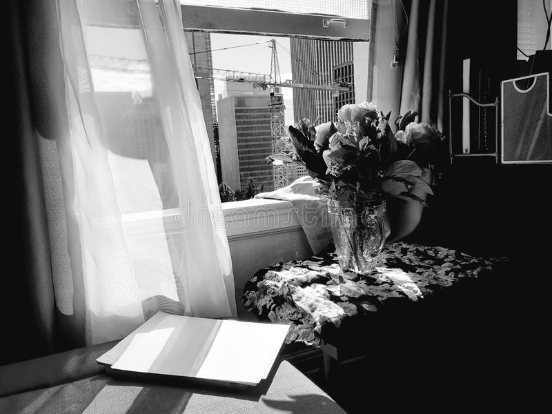 Bloemen in een venster royalty-vrije stock foto