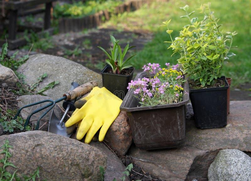 Bloemen en apparatuur in tuin stock foto
