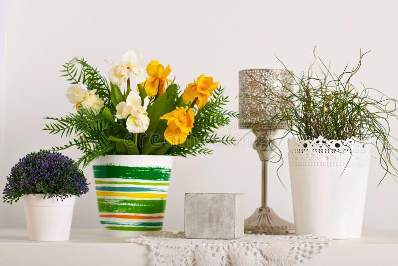 Bloemen en binneninstallaties op witte muurachtergrond stock afbeeldingen