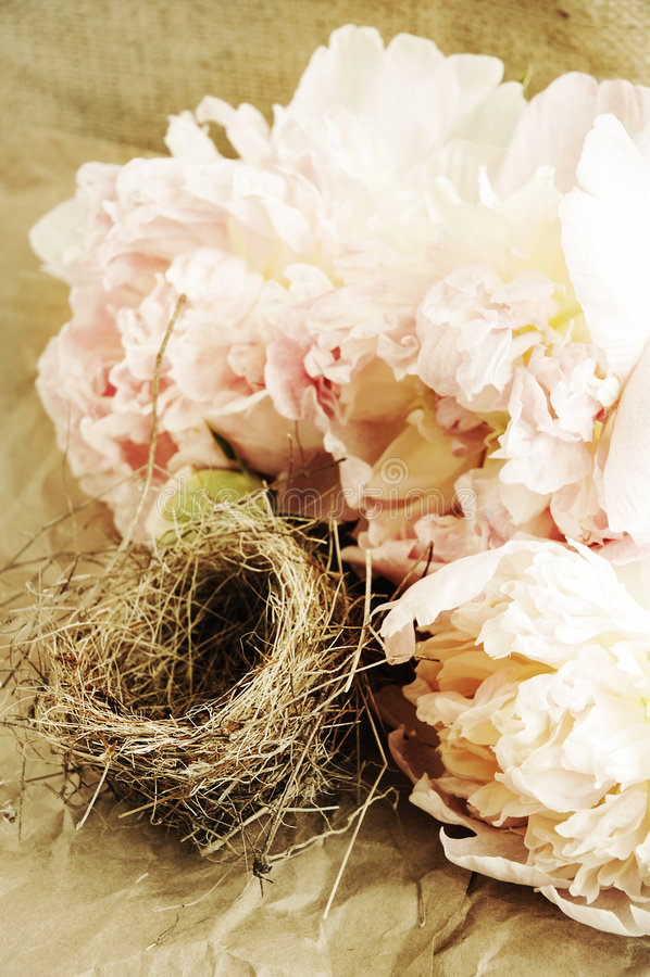 Bloemen en het nest van de vogel