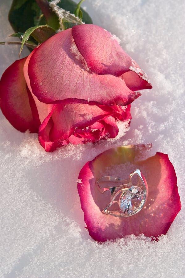 Bloemen en juwelier stock foto