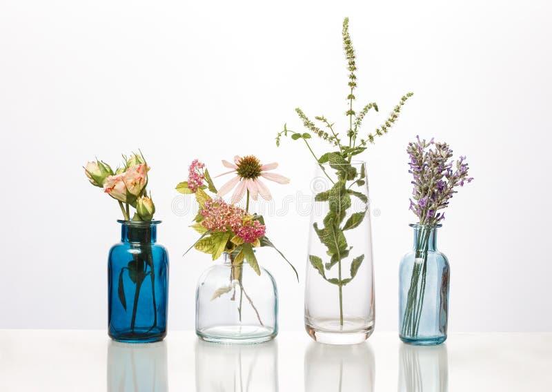 Bloemen en kruiden in glasflessen Abstracte die bloemboeketten in flessen op wit worden geïsoleerd stock foto's
