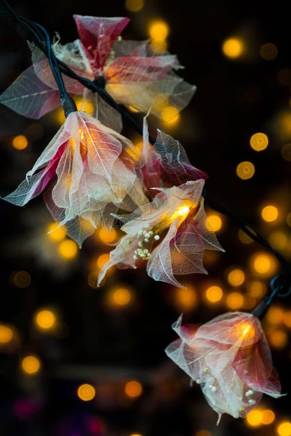 Bloemen en lichten voor Kerstmis stock foto's