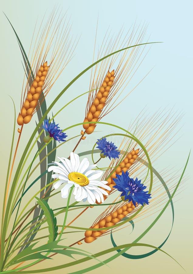 Bloemen en oren van tarwe vector illustratie