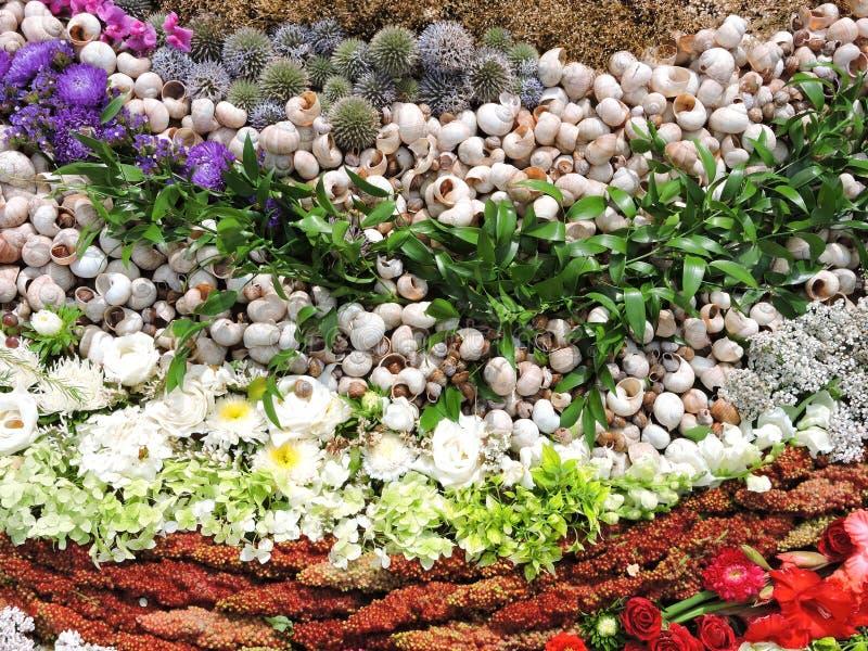 Bloemen en shells patroon stock foto