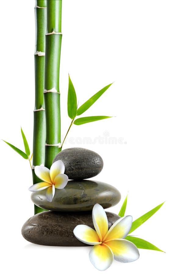 Bloemen en stenen