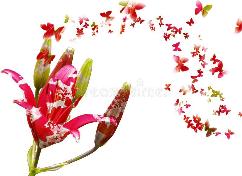Bloemen en vlinders stock foto's