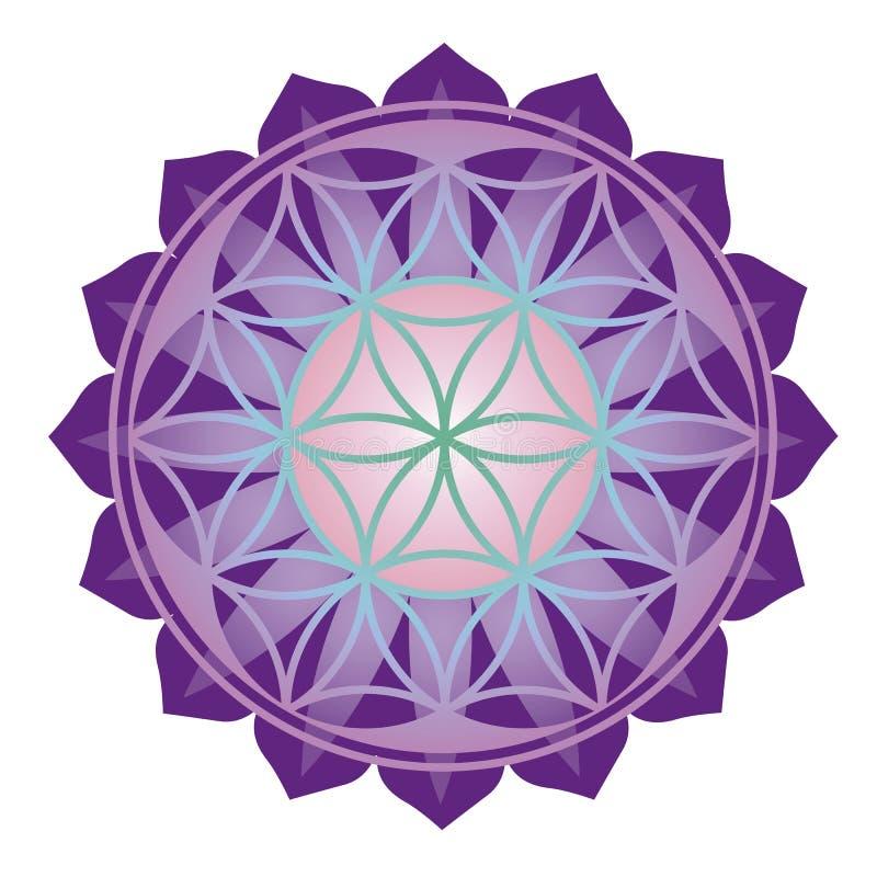 Bloemen esoterisch ontwerp stock illustratie