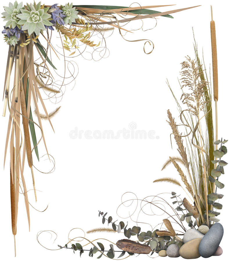 Bloemen Frame 1 royalty-vrije stock foto