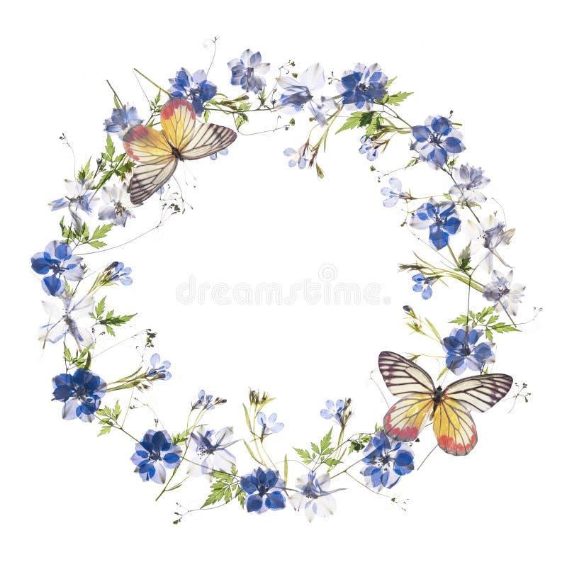 Bloemen frame vector illustratie
