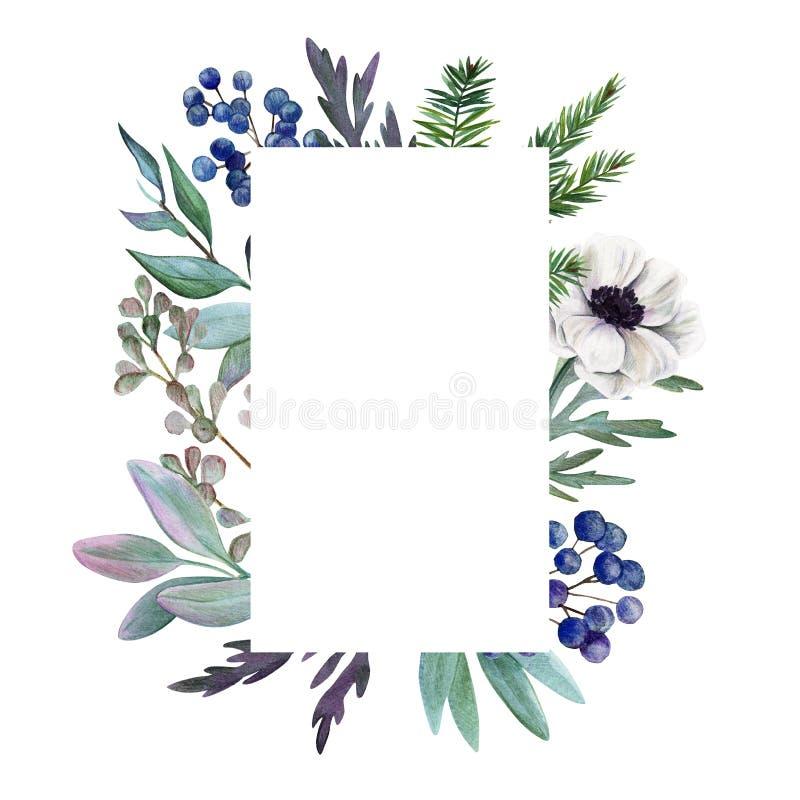 Bloemen frame Getrokken waterverf botanische hand stock illustratie