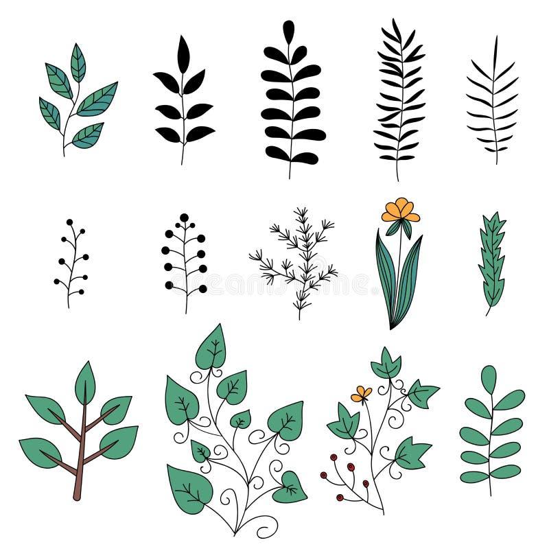 Bloemen geplaatste elementen De takken van de boom met bladeren met bewolkt Reeks hand getrokken krabbelbloemen stock illustratie