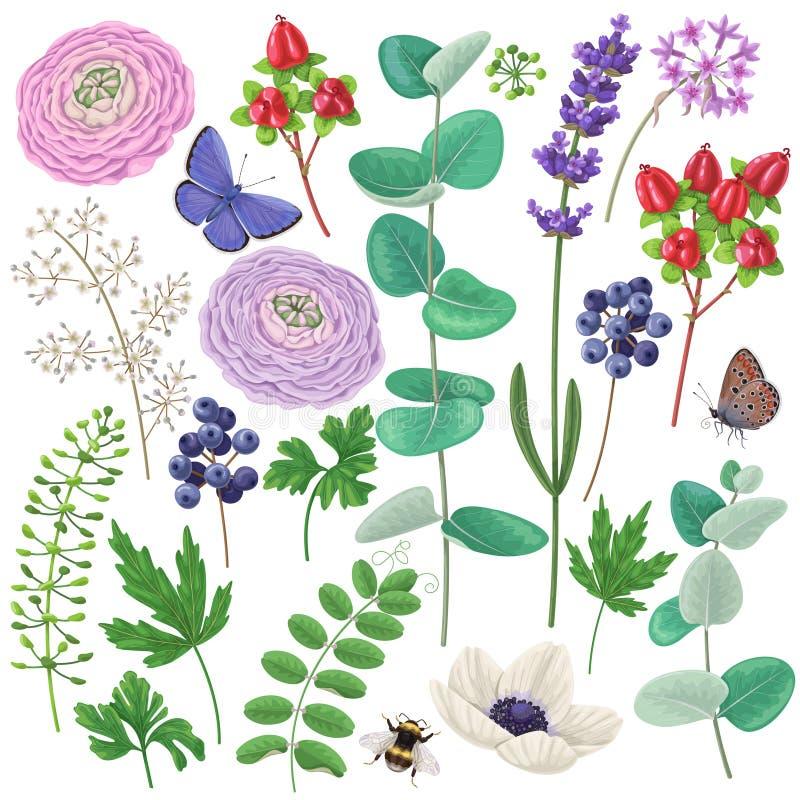 Bloemen geplaatste elementen en insecten stock illustratie