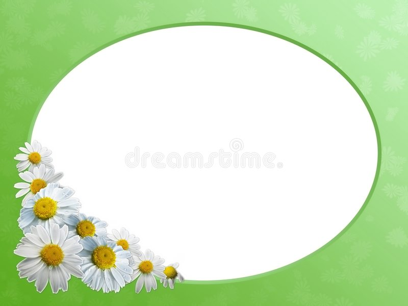 Bloemen grens stock illustratie