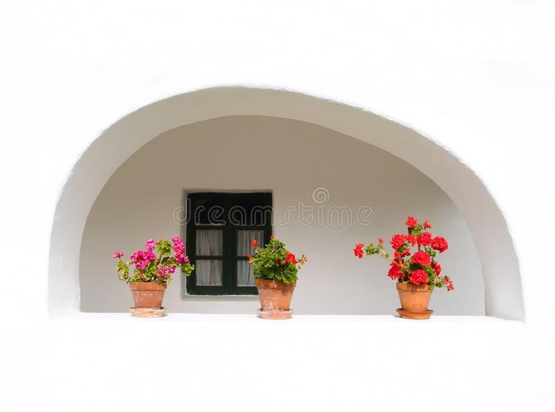Bloemen in het venster royalty-vrije stock afbeeldingen
