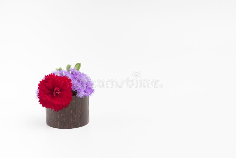 Bloemen in kleine vaas op een witte achtergrond stock foto