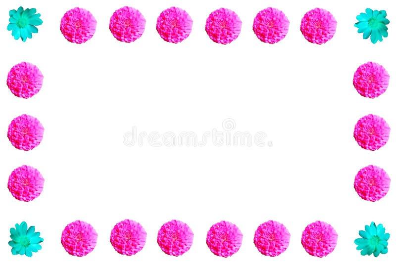 Bloemen kleurrijke patroonreeks als achtergrond stock afbeeldingen