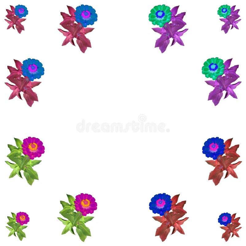 Bloemen kleurrijke patroonreeks als achtergrond royalty-vrije stock foto