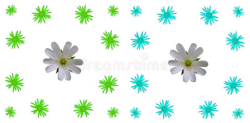 Bloemen kleurrijke patroonreeks als achtergrond stock fotografie