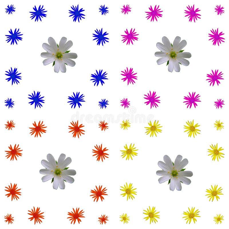 Bloemen kleurrijke patroonreeks als achtergrond stock afbeelding