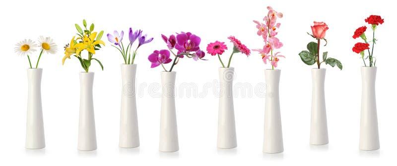 Bloemen in lange witte vazen stock foto