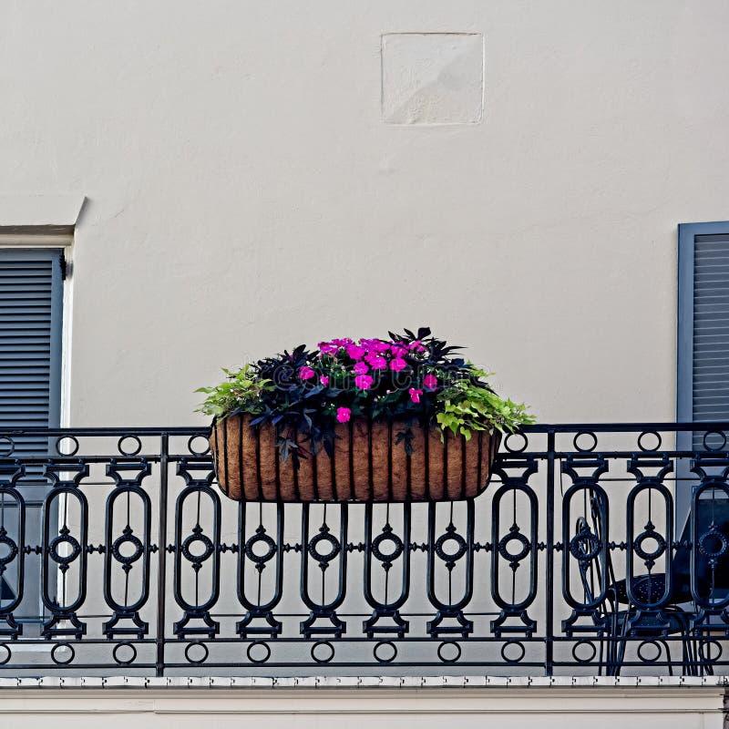 Bloemen in Mand op Onzin stock afbeelding
