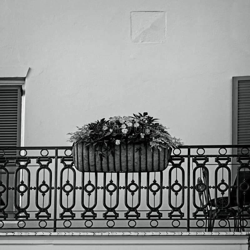 Bloemen in Mand op Onzin in het Franse B&W-Kwart stock foto
