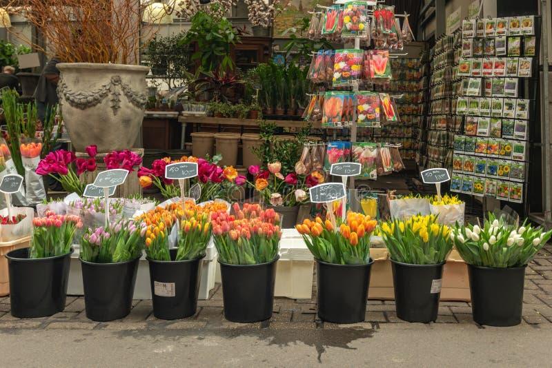 Bloemen Market Amsterdam Olanda fotografia stock libera da diritti