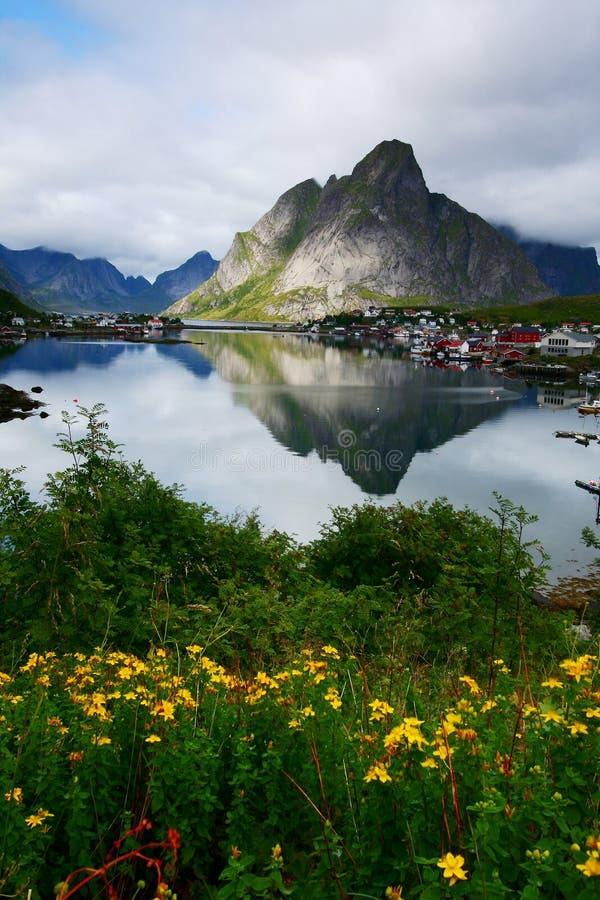 Bloemen, meer en berg royalty-vrije stock fotografie